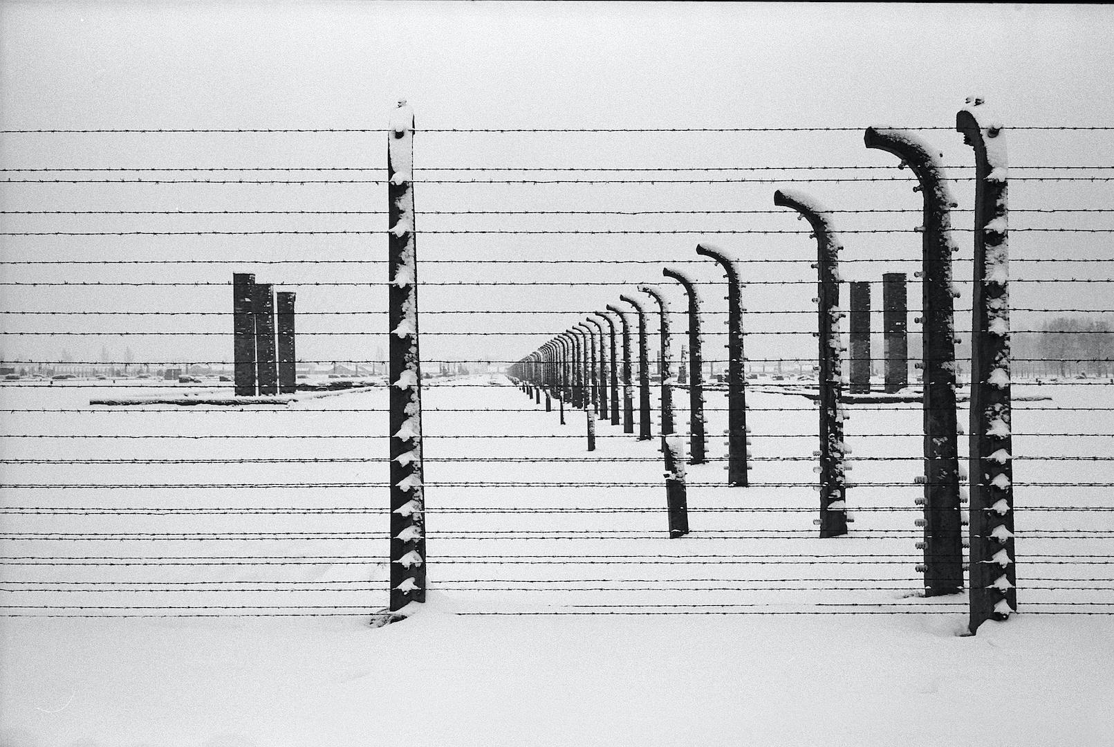 Giornata della memoria - Auschwitz - Foto di Danilo Balducci - Tutti i diritti riservati